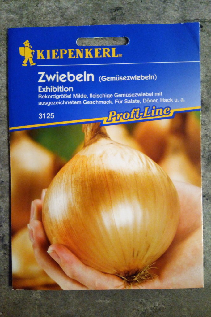 "Zwiebelsamen ""Exhibition"""